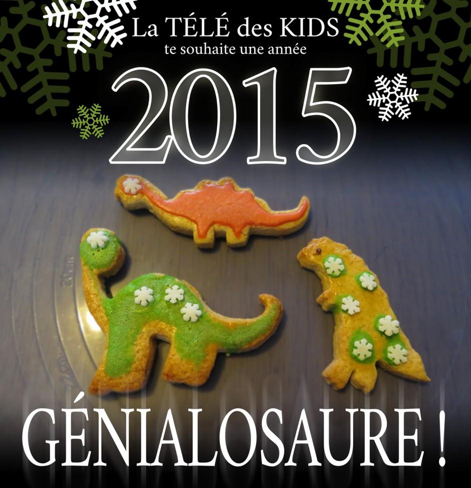 Bonne année 2015