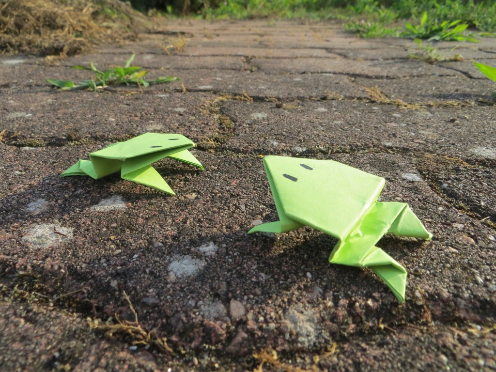 grenouille en papier