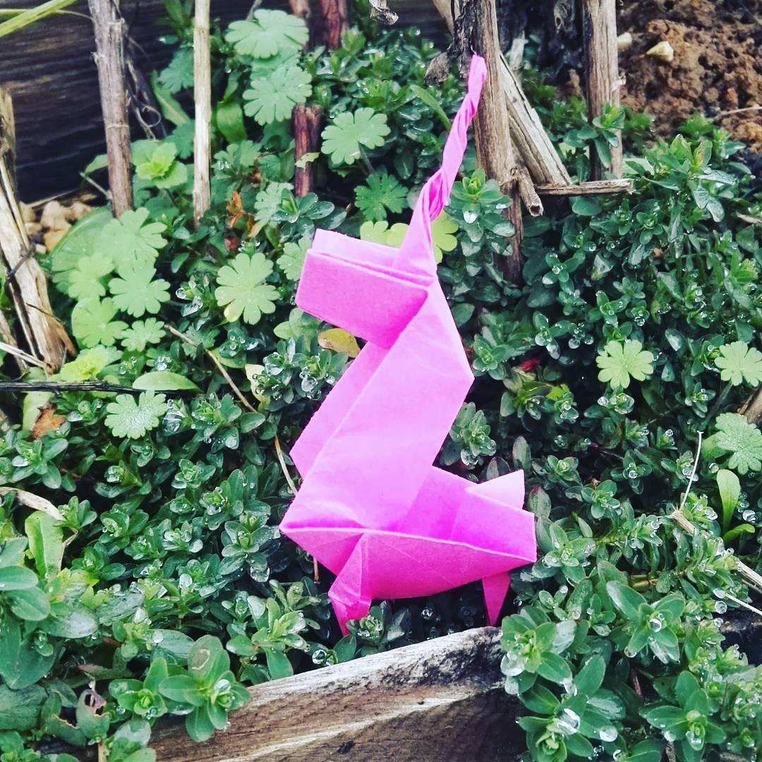 origami fleur facile - tulipe en papier - la tÉlÉ des kids