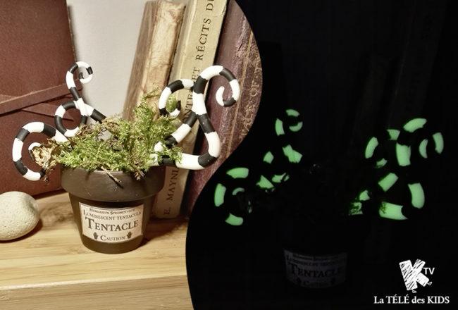 Plante magique halloween