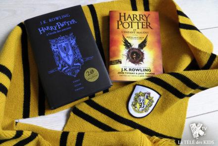 Harry Potter 20 ans de magie